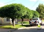 LA POLICIA BUSCA PISTAS POR EL ROBO QUE SUFRIO UN HOMBRE EN LA MAÑANA DEL SABADO